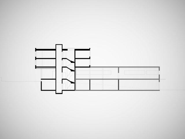 1107_Root_01_WEB